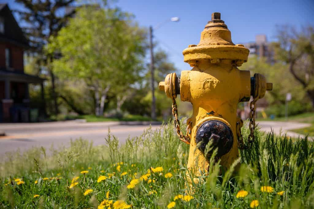fire hydrant parking ontario