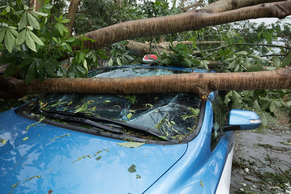 does insurance cover weather damage to cars